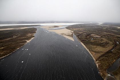 Одобренный Путиным мост через Лену назвали «вековой мечтой народа»