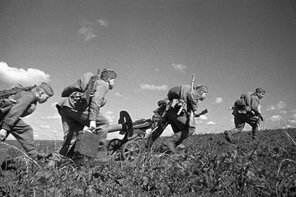 На местах боев на Курской дуге отказались растить свиней