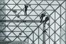 """«На орбите» — работа фотографа Мохаммеда Алмудхи. «Летом 2019-го я со своей семьей посетил дом Альфреда Шмелы, построенный датским архитектором Альдо ван Эйком, — <a href=""""https://www.photocrowd.com/photos/laying-in-orbit-3275095.a80fa8a74/"""" target=""""_blank"""">поведал</a> автор. — Этот музей, открытый в 1971 году, сейчас имеет статус достопримечательности, он был первой в Германии частной художественной галереей. Пятиэтажное здание из серой пемзы удивительным образом сочетает частное и публичное пространства, интерьер и экстерьер».<br><br>Томас Сарацено — современный аргентинский художник — добавил музею конструкцию из стальной проволоки, охватывающую огромный стеклянный купол здания на трех разных уровнях. Внутри этой «Орбиты» снуют посетители. Снизу и правда кажется, что они не ходят, а левитируют."""