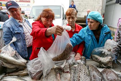Медведев понадеялся на мурманскую рыбу