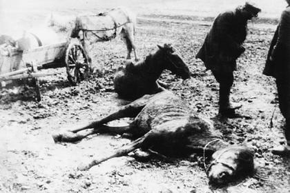 Как голод 30-х годов помогает украинским президентам удерживать власть