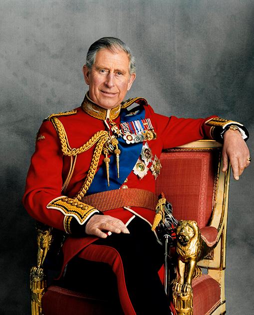 Принц Чарльз позирует для официального портрета на 60-й день рождения, 2008 год
