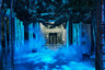 Каждый год лондонский отель Claridge's приглашает известных дизайнеров для украшения рождественской елки в своем холле. В 2016 году Claridge's пригласили Айва и Ньюсона, и это был один из самых необычных их проектов, потому что они никак не украсили ель и вместо этого работали с окружением. То есть они не стали воплощать декорации рождественских сказок, а воссоздали атмосферу зимнего леса без гирлянд, игрушек и ярких огоньков.