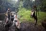 Экологи бьют тревогу — охотники вроде Матонгу истребляют животных, населяющих леса Центральной Африки, со страшной скоростью.
