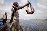 «Когда я был подростком, мне приходилось подниматься по реке десять километров, чтобы найти добычу. Теперь же дичь прячется за 40 километров, не ближе», — признается 61-летний конголезец.