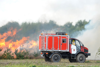 В российском регионе закупят лесопожарную технику на миллионы рублей