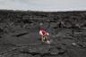64-летняя Дайан Коэн была вынуждена покинуть родной край из-за извержения вулкана Килауэа на Гавайях. Она сажает кокосовое дерево на том месте, где когда-то находился ее дом. Извержение вулкана на одном из гавайских островов началось в мае 2018 года, потоки лавы покрыли весь жилой район Капохо. Спустя год на этой территории никто не живет. Последние 60 лет вулкан не беспокоил местных жителей, в связи с чем живописная территория стала популярна не только у американцев, но и у туристов. Недвижимость здесь, несмотря на не самое безопасное местоположение, была одной из самых дорогих в штате.