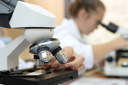 Российских школьников завлекут в науку