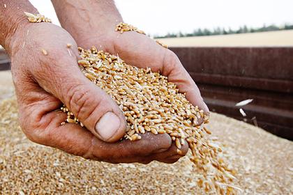Российское зерно выведут из-под власти Запада