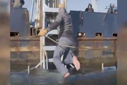 Ученые укротили смертоносную акулу-людоеда и затащили ее на судно