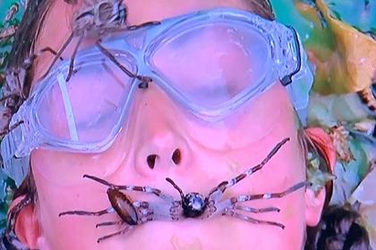 Участницу реалити-шоу засыпали червями и заставили взять в рот паука