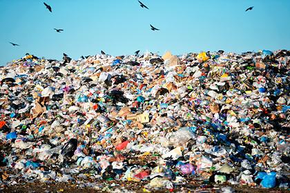 В России «очеловечат» мусор