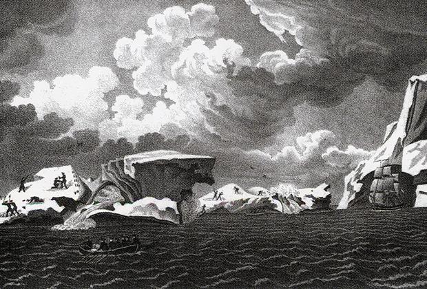 Плавающие ледяные горы