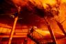 Стремительно распространяющийся пожар в Южной Калифорнии обратил в бегство тысячи жителей этого района. Из города Сан-Бернардино были экстренно эвакуированы жители около 500 домов, еще 200 — из пригорода Лос-Анджелеса, города Пасифик-Палисейдс.