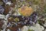 Саамы со своими оленьими стадами ходили в горы только летом. Оленеводы считают, что в долине озера Большой Вудъявр живет злой зимний дух, и будить его опасно.
