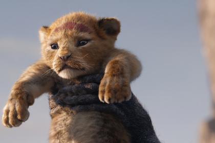 Все поддержанные Минкультом фильмы собрали за год меньше «Короля Льва»