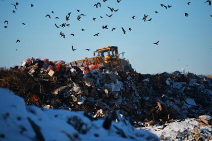 Оценена потребность россиян в мусоросжигательных заводах