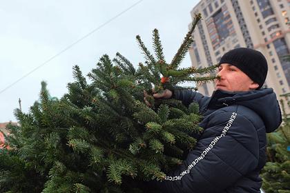 Россиянам раскрыли секрет Нового года без мусора