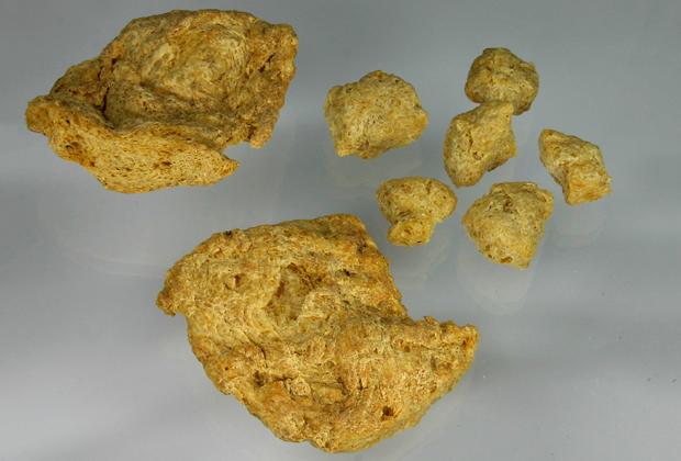 Растительный протеин
