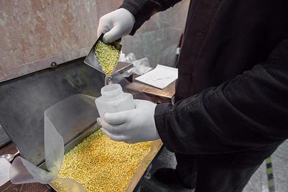 Российские власти задумались о новых лицензиях на экспорт золота