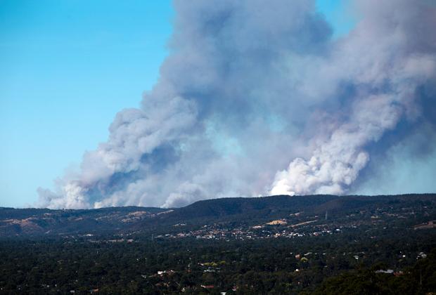 Природный пожар в регионе Аделаидских холмов в Австралии