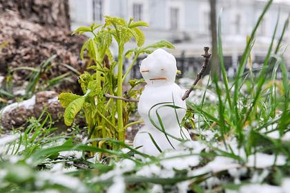 Москвичам рассказали о погоде перед старым Новым годом