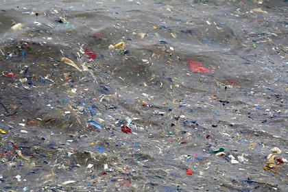Раскрыты масштабы загрязнения Баренцева моря микропластиком