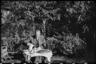 В. Крамер наливает себе кофе в саду. Германия, 1942 год.