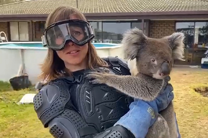 Журналистка поверила шутке и надела бронежилет для встречи с коалой