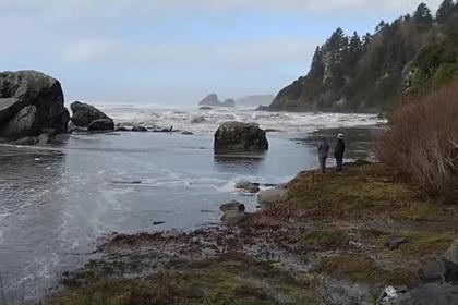Мощная волна смыла прогуливавшихся по берегу океана туристов