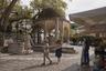 Платан Гиппократа на площади острова Кос — дерево, под которым, согласно легенде, считавшийся отцом медицины Гиппократ обучал своих студентов искусству медицины. Расположенный здесь платан считается самым большим деревом из своего семейства в Европе. Диаметр его ствола составляет около 12 метров.