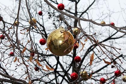 Новогодние декорации едва не убили россиянку
