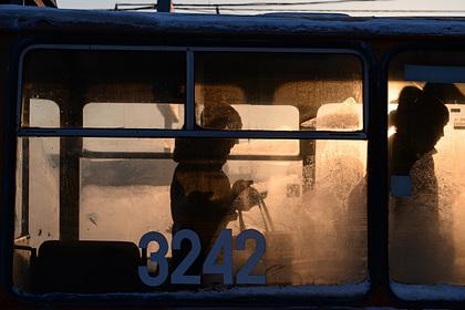 Российскую школьницу выгнали из троллейбуса из-за нехватки рубля на проезд