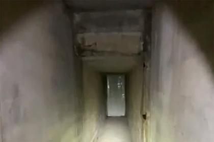 Американец нашел под своим домом «убийственный тоннель»