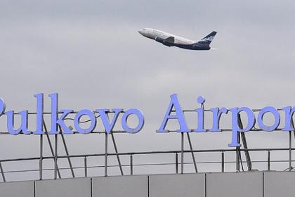 В аэропорту Петербурга застрелили собаку