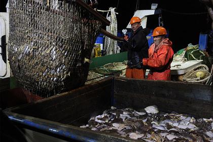 Россия заработала на рыбе