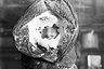 Передвижение во время бури. Австралийская антарктическая экспедиция, 1912