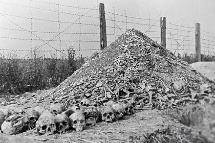 Останки погибших в концлагере Майданек