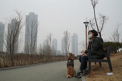В Корее решили спасти Китай от смертельного вируса