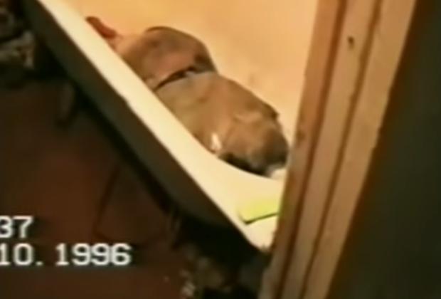 Тело убитой жертвы в ванне Спесивцевых