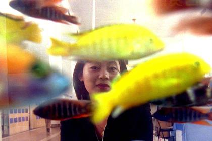 Ввоз экзотических животных и рыб из Китая в Россию ограничат