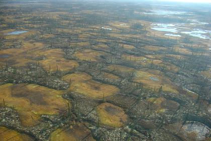 Раскрыта правда о климатической бомбе в Арктике