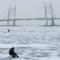 Рыбаки на льду Финского Залива. Архивное фото