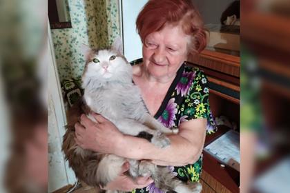 Кот укусил спящую хозяйку за шею и спас ее от гибели