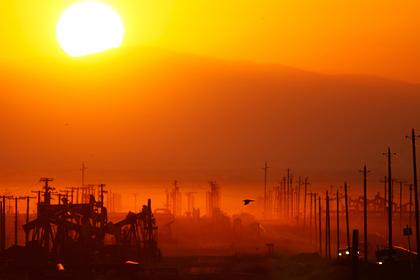 Человечество оказалось не готовым к климатической катастрофе