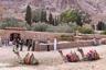 Паломники встречают рассвет на горе Синай