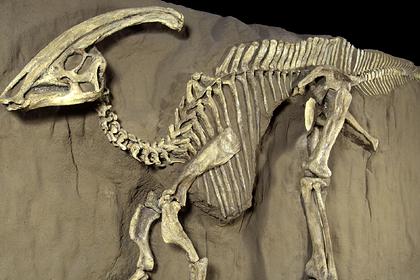 У динозавров нашли загадочную форму рака