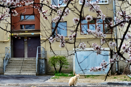 Россиянам рассказали о погоде в начале весны