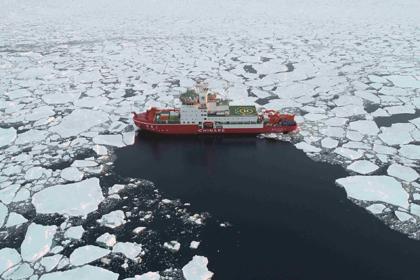 Предсказано исчезновение льдов в Арктике