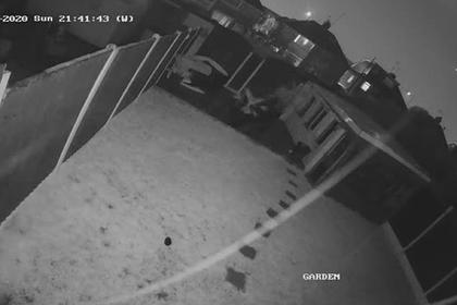 Молния ударила в летящий пассажирский самолет и попала на видео